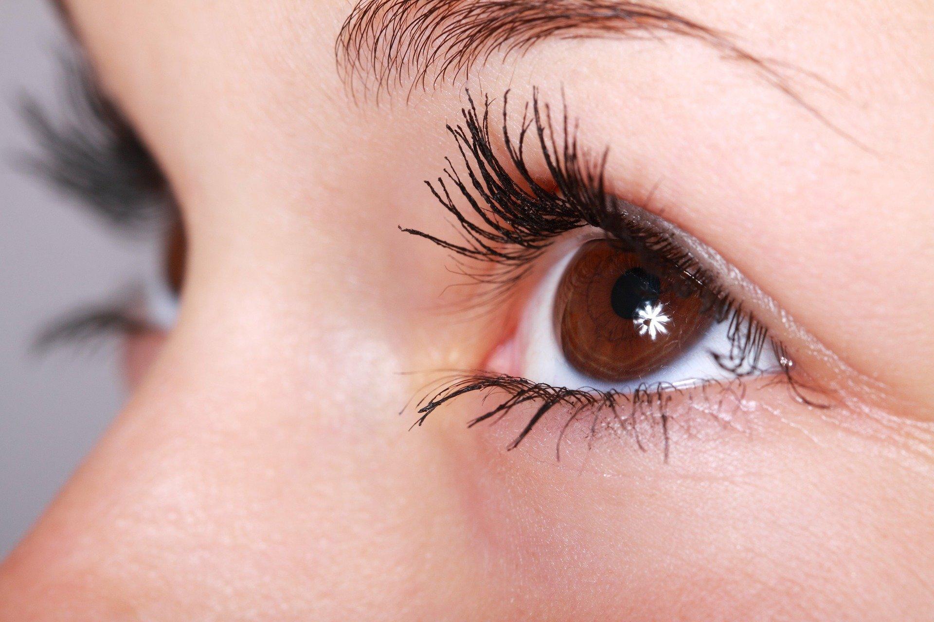 Vision-Wissenschaftler veröffentlichen Ergebnisse der lipid-Auswirkungen in den Mechanismus des trockenen Auges Krankheit