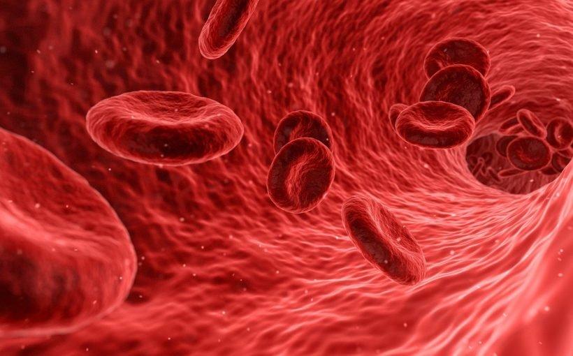 Bluttest erkennt Alzheimer-Schäden, bevor Symptome