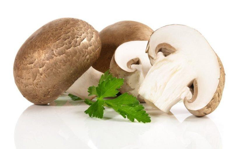 Gezüchtete Champignon-Pilze haben 30-Mal höheren Vitamin-D-Gehalt: Sind diese Pilze noch gesund?