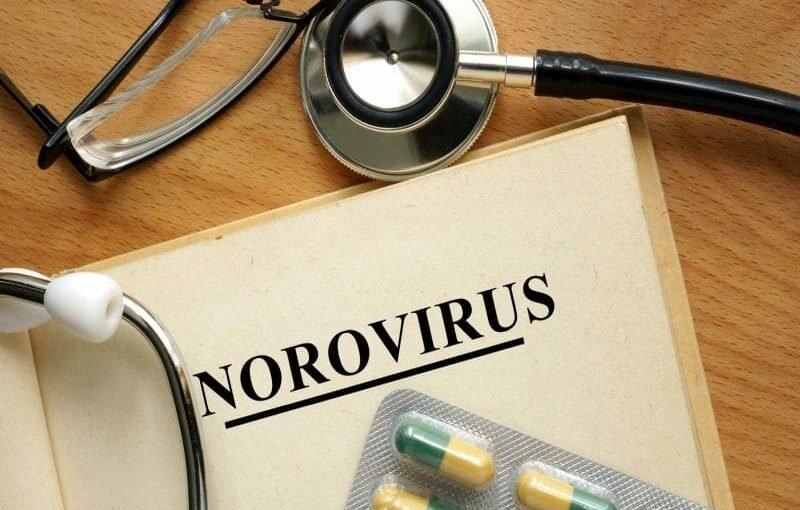 Wie im Kampf gegen norovirus, der 'Kreuzfahrtschiff' Keim