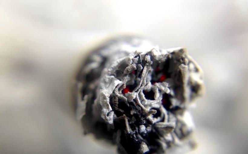 Marihuana Rauchen verbunden mit höheren Spermien-Konzentrationen, Studie findet