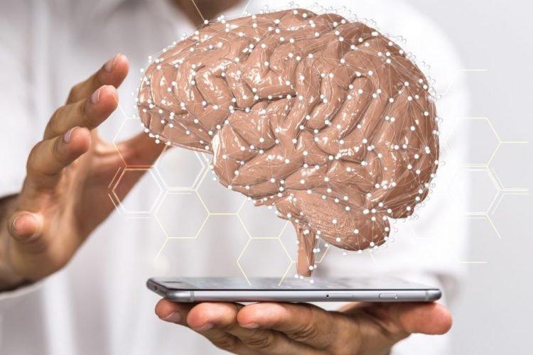 Hirnforschung: Das Geheimnis unserer Intelligenz wurde enthüllt