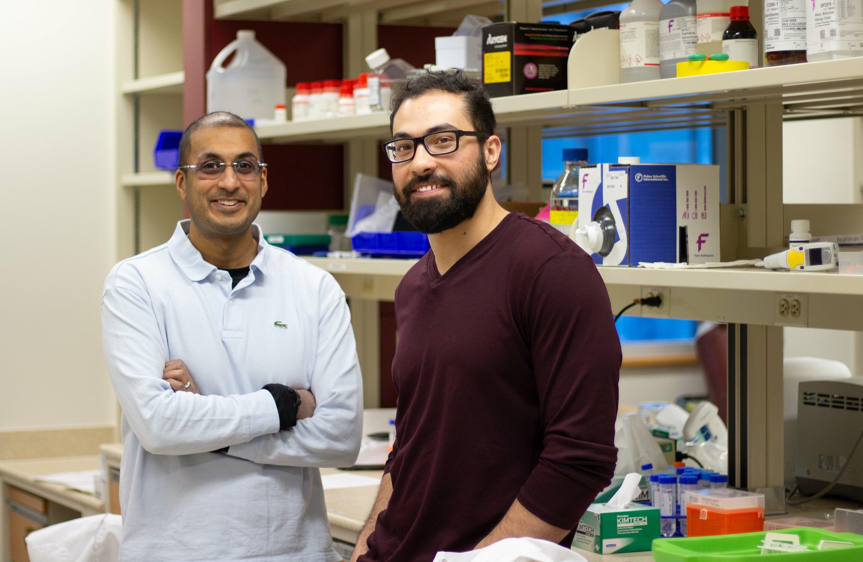 Entdeckung Kropf Chemotherapie Potenz unter den Schutz des Herzens von Nebenwirkungen