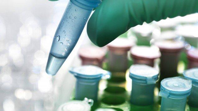 Merck und GSK entwickeln neue Krebsimmuntherapie