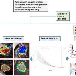 Forscher verwenden radiomics, vorherzusagen, wer wird profitieren von Chemotherapie
