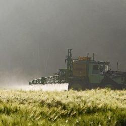 Frühe Exposition gegenüber Pestiziden verbunden mit kleinen erhöhten Risiko von Autismus-Spektrum-Störung