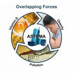 Vitamin D kann vor Verschmutzung schützen-assoziierte asthma-Symptome bei adipösen Kindern
