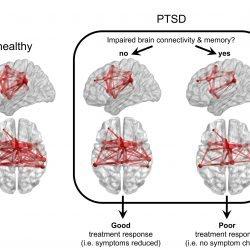 Biologie kann bestimmte PTBS-Patienten nicht mehr zur Verhaltenstherapie