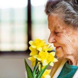 Schlechter Geruchssinn im Alter weist auf erhöhtes Sterberisiko hin