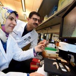 Neue Erkenntnisse darüber, warum klare Margen in der Brustkrebs-Chirurgie, sind solche guten news