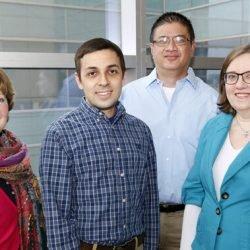 Studie verbindet big-data-und Zebrafisch Biologie zu enthüllen Mechanismen der menschlichen Krankheit