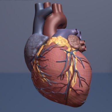Künstliche Intelligenz könnte wählen Herzinsuffizienz-Patienten für die teure Behandlung
