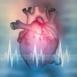 Lebensbedrohliche Herzrhythmusstörungen auch ohne OP behandelbar?