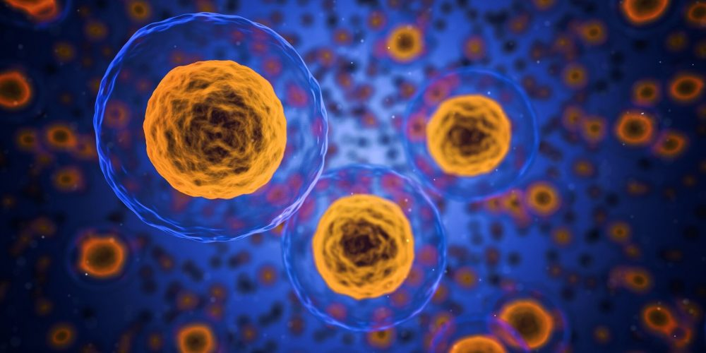 Studie wirft ein Licht auf, wie die Zellen im Körper spüren können, Krebs