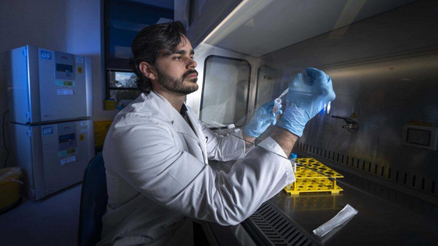Die Zelle Entdeckung, die das stoppen könnten, Allergien