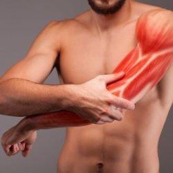 Muskelaufbau: Mehr Wiederholungen oder hohe Gewichte beim Krafttraining?
