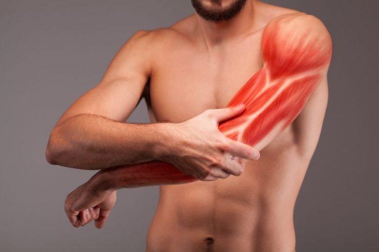 Muskelaufbau Wiederholungen