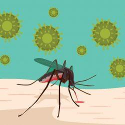 Was Ist Malaria, die Tödlich verlaufende Krankheit, Übertragen Durch Mückenstiche?