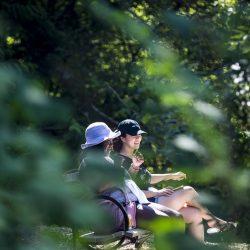 Wie die Natur die Auswirkungen auf die psychische Gesundheit im Stadt-Pläne
