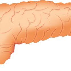 Vielversprechender Ansatz: diabetes Verhindern mit intermittierenden Fasten