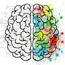 """Wie das Gehirn """"kommt"""", ohne tatsächlich zu zählen"""