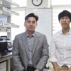 Forscher beschreiben einen Mechanismus induzieren, der selbst-Tötung von Krebszellen