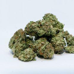 Studie untersucht cannabis-Wirkung auf das Gehirn Neurochemie