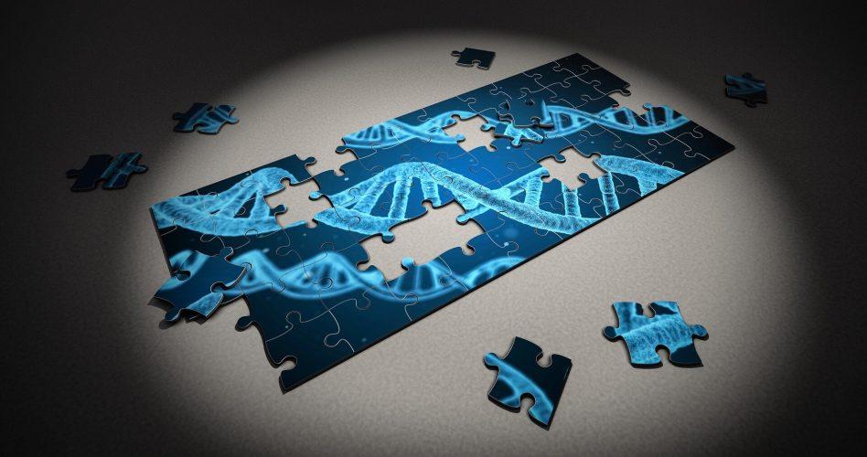 Irritiert Genen regulieren weißen Blutkörperchen verbunden mit Autismus Genetik und schwere