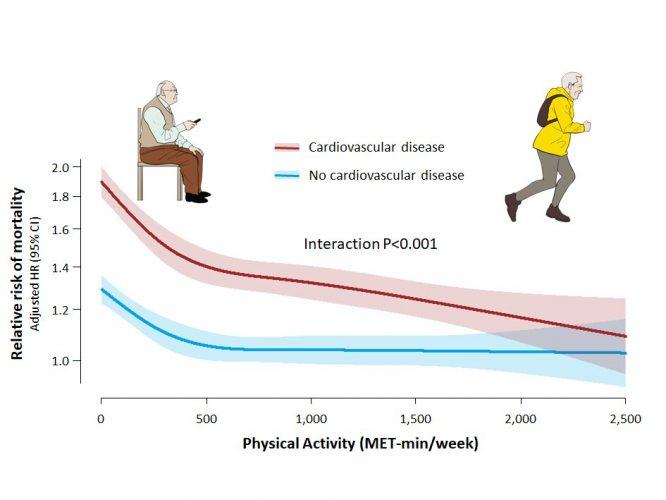 Herz-Kreislauf-Erkrankungen Patienten profitieren mehr von Sport als gesunde Menschen