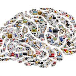 Gehirn-Aktivität Intensität Laufwerke müssen für den Schlaf