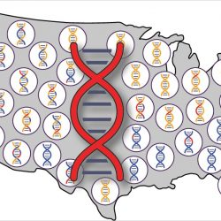 Die Nachfahren der frühen Europäer und Afrikaner in UNS tragen, Native American genetischen Erbe
