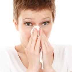 Grippe-Saison Moderat, nicht 'mutant'