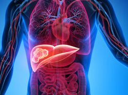 Neue Forschung schlägt Protonen-Strahlung profitieren können Punkte mit anspruchsvollen Tumoren der Leber