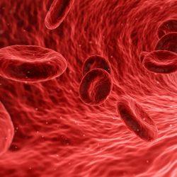 Genaue Lymphom-Prognose von einem einfachen Blut-test