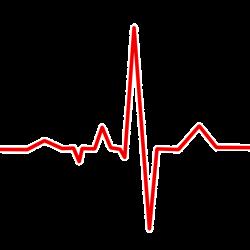 Eine kinase identifiziert, die als mögliches Ziel zur Behandlung von Herzinsuffizienz