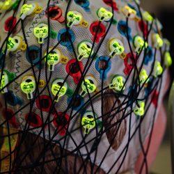 Vorgestellt Bewegungen verändern unser Gehirn