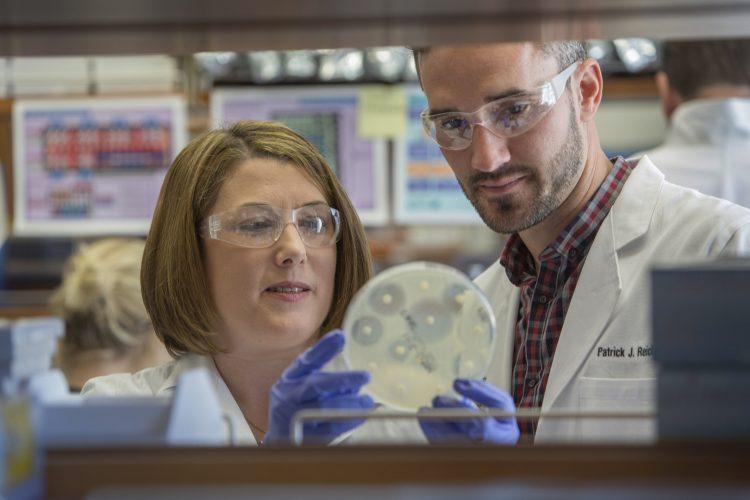 Drug-resistenten Staphylokokken können sich leicht in häuslichen Umgebungen