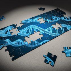 Studie findet Schlüssel Alzheimer-gen (APOE) verhält sich das anders in der Karibik Hispanics