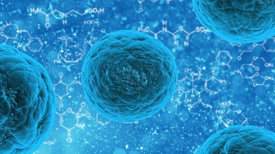 Wissenschaftler entdecken neuer Medikamente mit Potenzial zur Behandlung von hartnäckigen Krebs