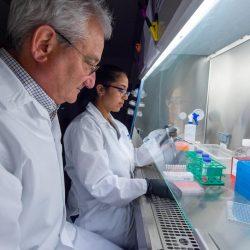 DNA-Technologie als eine neuartige Strategie für die Lieferung von anti-HIV-Antikörper