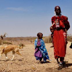 One-Health-Ansatz ist eine zwei-for-one-stop-für Gesundheit in Tansania