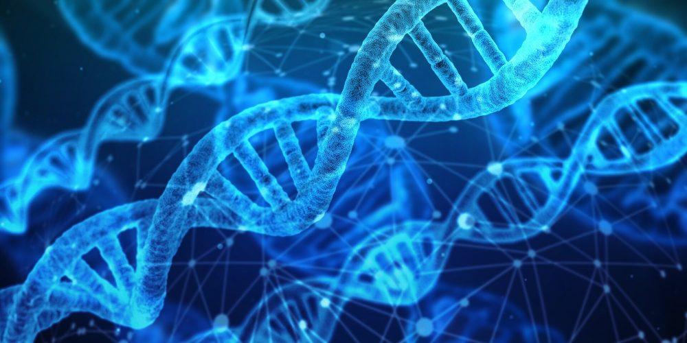 Entzündliche Prozesse Laufwerk Fortschreiten der Alzheimer-Krankheit und andere Erkrankungen des Gehirns