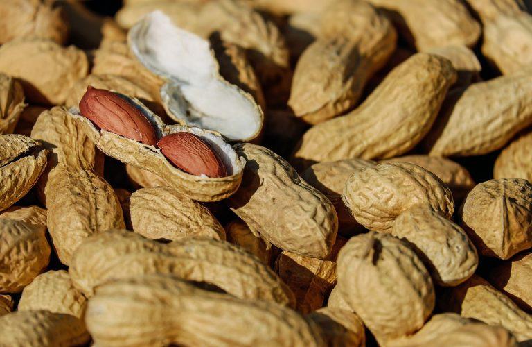 Vierzig Prozent der Menschen mit Erdnuss-Allergien Essen kann Nüsse wählen Sie aber nicht