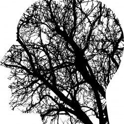 Die Forschung zeigt, zervikale Hernien können zu Gehirnschäden führen