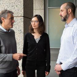Neues kleines Molekül zur Behandlung der Alzheimer-Krankheit und Dravet-Syndrom