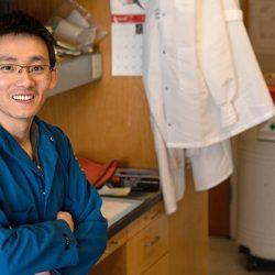 UCLA-Forscher finden die chronische Entzündung trägt zur Metastasierung von Krebs