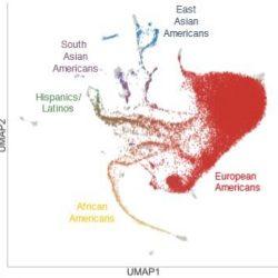 Genetische Studie bietet einen umfassenden und vielfältigen Blick auf die jüngsten US-Bevölkerung-Geschichte