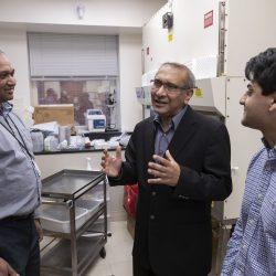 Resarchers finden Methode zur Verbesserung von Krebs-Ergebnisse durch die Untersuchung des Patienten Gene