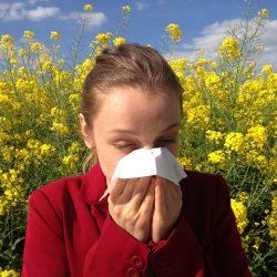 Nasale Biomarker Vorhersagen, schwere pollen-spezifische Allergie-Symptome