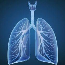 Asthma, COPD erhöhen Chancen für schwere COVID-19 -, Lungen-Experten warnen
